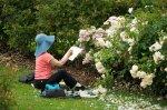 Kobieta w ogrodzie