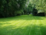 Idealnie płaski trawnik